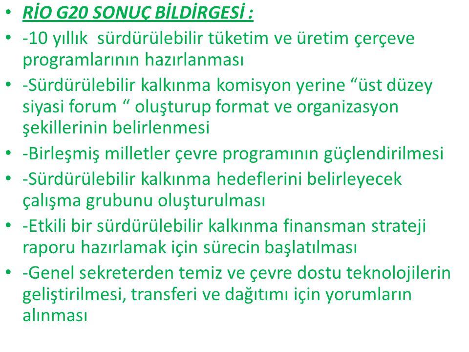 RİO G20 SONUÇ BİLDİRGESİ :