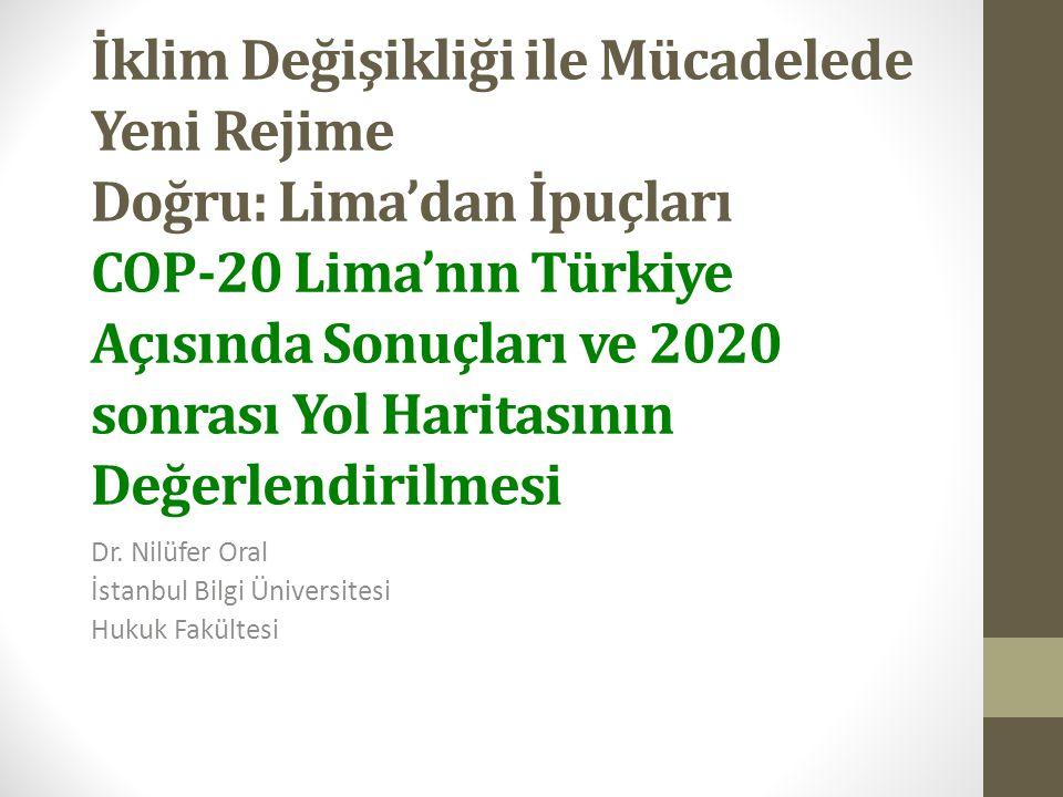 Dr. Nilüfer Oral İstanbul Bilgi Üniversitesi Hukuk Fakültesi