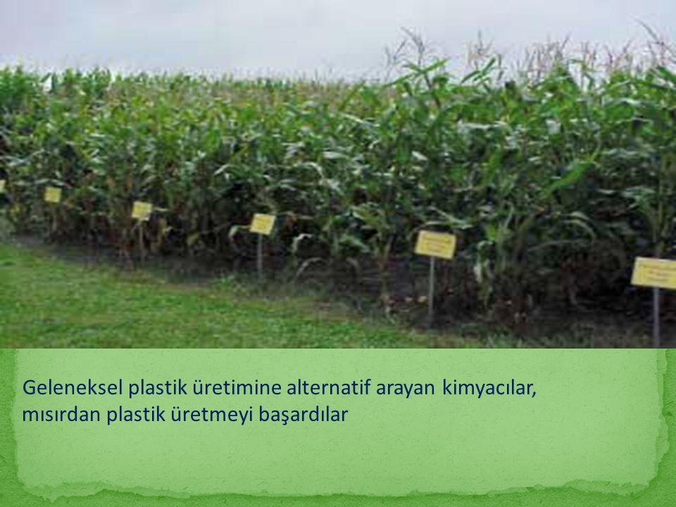 mısırdan plastik üretmeyi başardılar