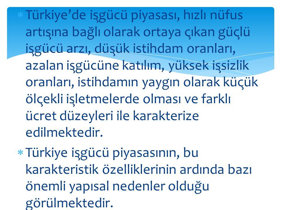 Türkiye'de işgücü piyasası, hızlı nüfus artışına bağlı olarak ortaya çıkan güçlü işgücü arzı, düşük istihdam oranları, azalan işgücüne katılım, yüksek işsizlik oranları, istihdamın yaygın olarak küçük ölçekli işletmelerde olması ve farklı ücret düzeyleri ile karakterize edilmektedir.