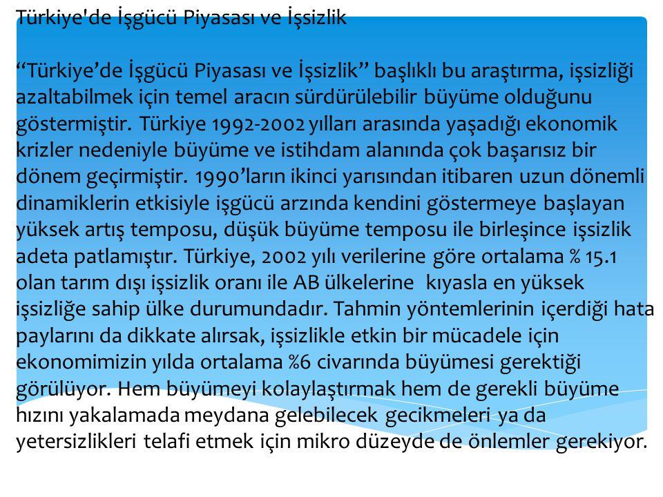 Türkiye de İşgücü Piyasası ve İşsizlik