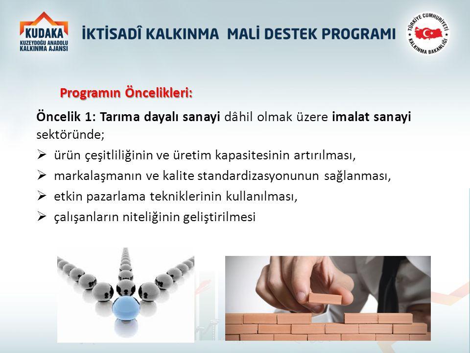 Programın Öncelikleri: