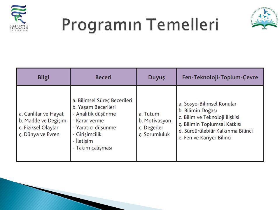 Programın Temelleri