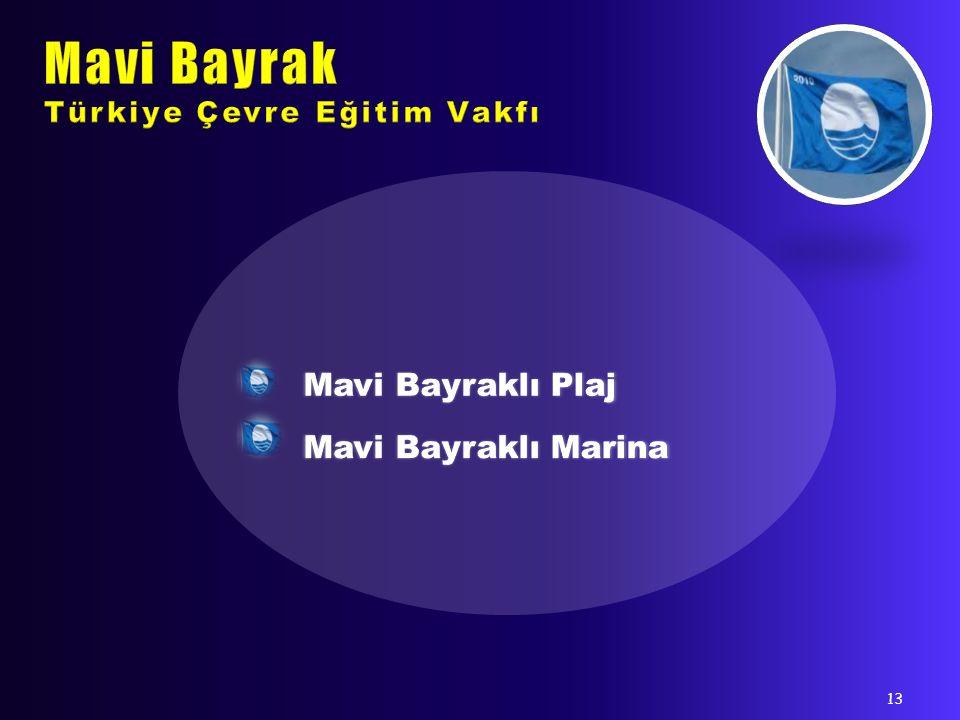 Mavi Bayrak Türkiye Çevre Eğitim Vakfı