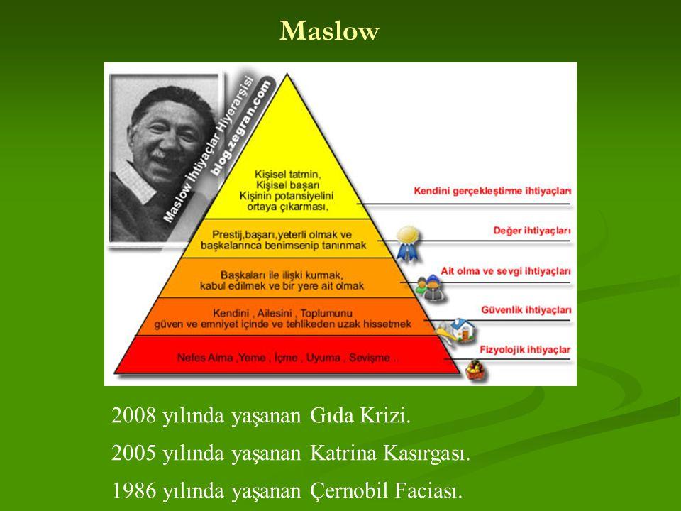 Maslow 2008 yılında yaşanan Gıda Krizi.