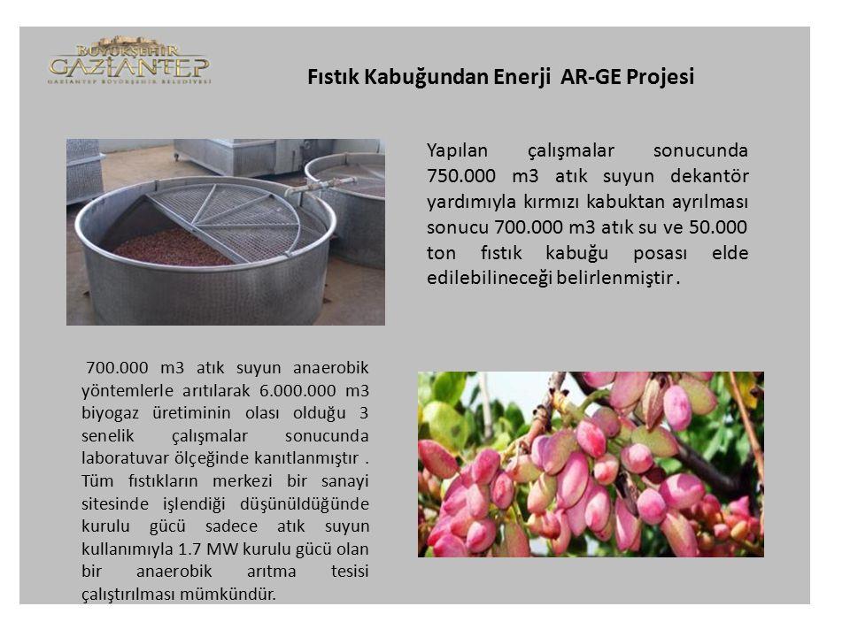 Fıstık Kabuğundan Enerji AR-GE Projesi