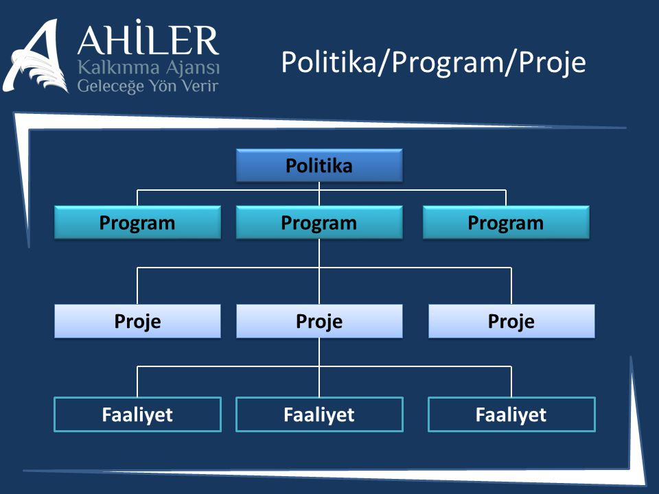 Politika/Program/Proje