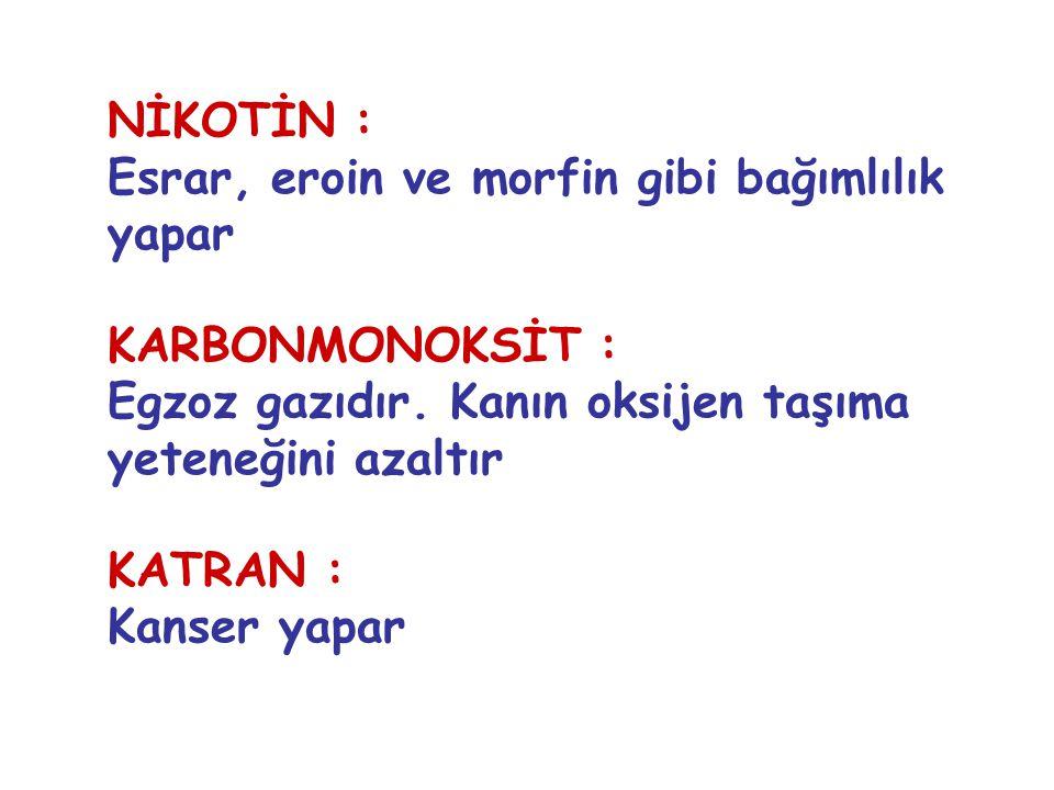 NİKOTİN : Esrar, eroin ve morfin gibi bağımlılık yapar KARBONMONOKSİT : Egzoz gazıdır.