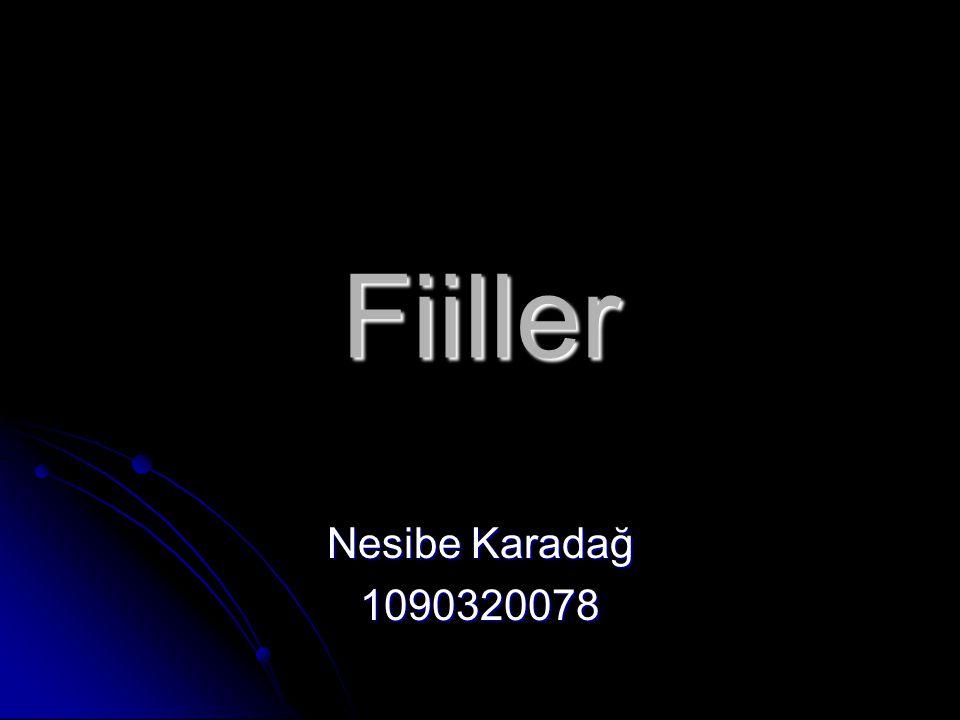 Fiiller Nesibe Karadağ 1090320078