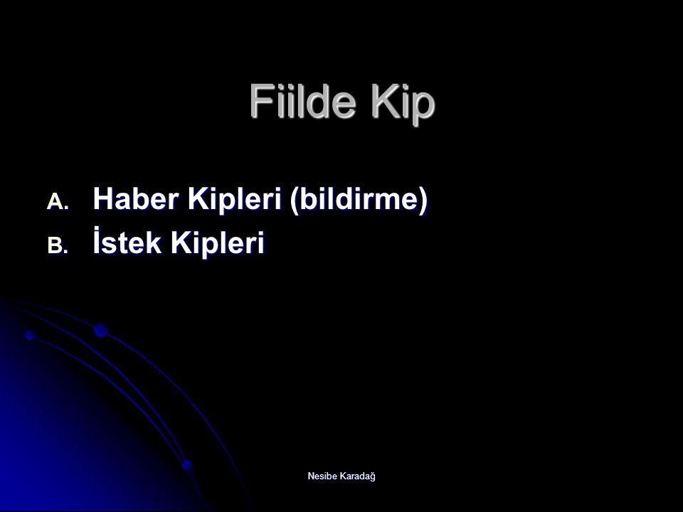 Fiilde Kip Haber Kipleri (bildirme) İstek Kipleri Nesibe Karadağ