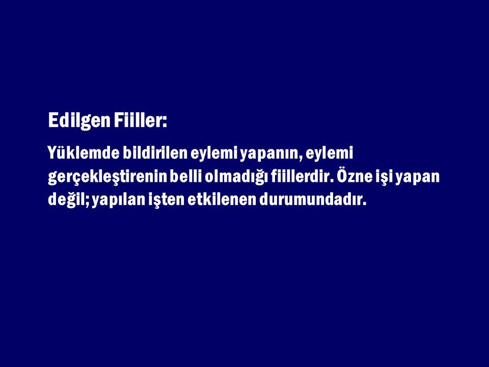 Edilgen Fiiller:
