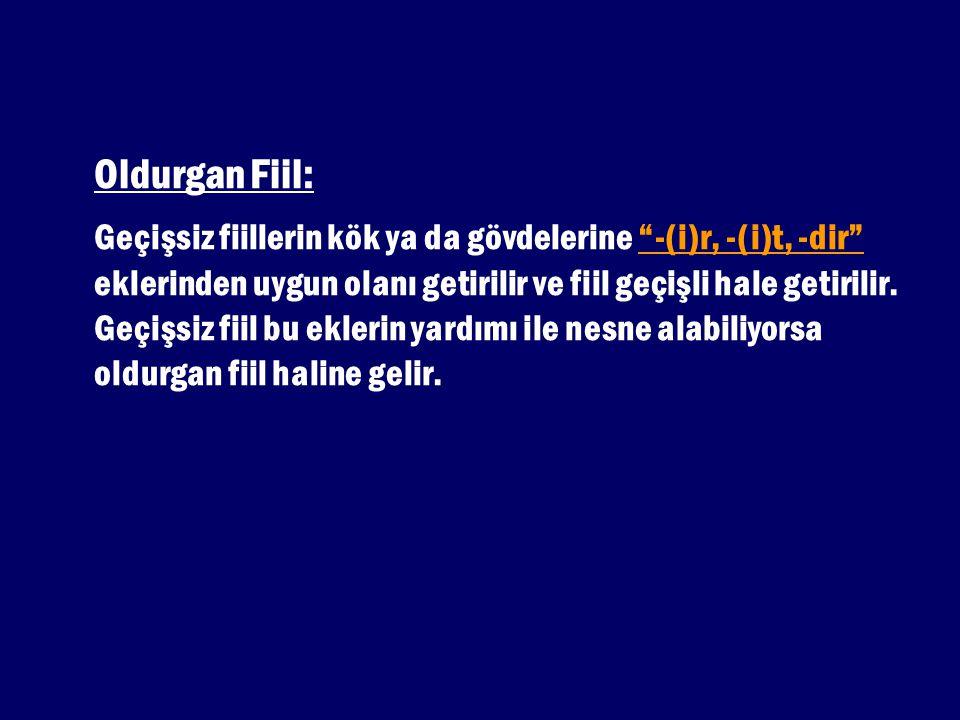Oldurgan Fiil: