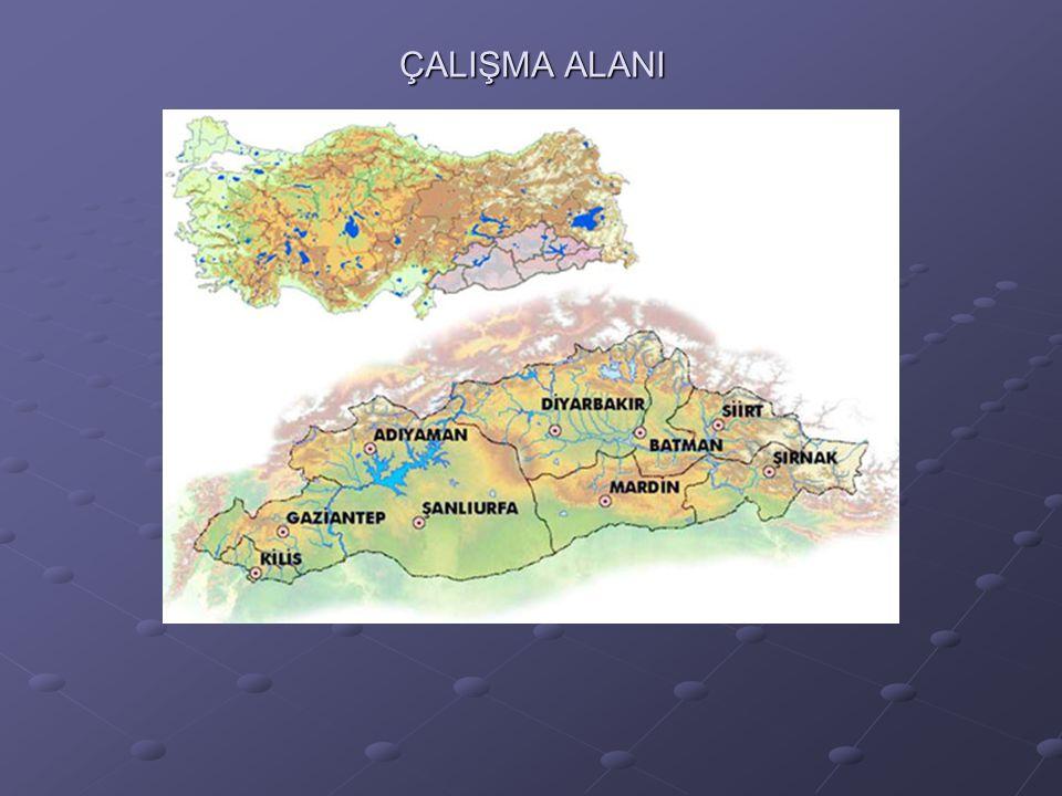 ÇALIŞMA ALANI