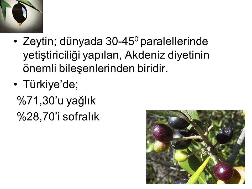 Zeytin; dünyada 30-450 paralellerinde yetiştiriciliği yapılan, Akdeniz diyetinin önemli bileşenlerinden biridir.
