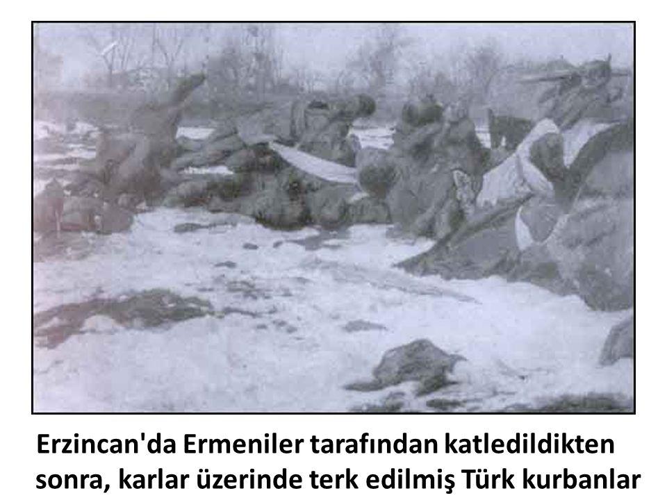 Erzincan da Ermeniler tarafından katledildikten sonra, karlar üzerinde terk edilmiş Türk kurbanlar