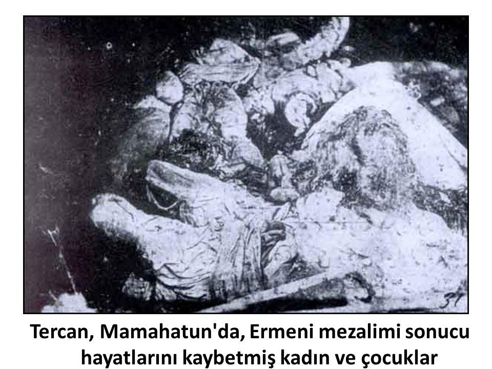 Tercan, Mamahatun da, Ermeni mezalimi sonucu hayatlarını kaybetmiş kadın ve çocuklar