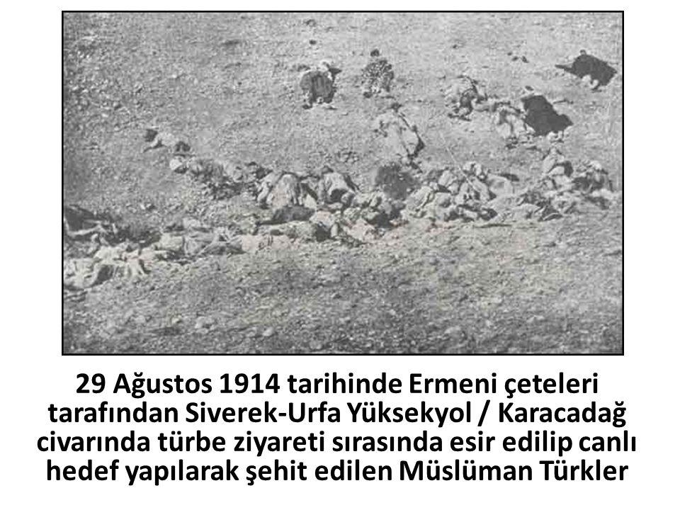 29 Ağustos 1914 tarihinde Ermeni çeteleri tarafından Siverek-Urfa Yüksekyol / Karacadağ civarında türbe ziyareti sırasında esir edilip canlı hedef yapılarak şehit edilen Müslüman Türkler