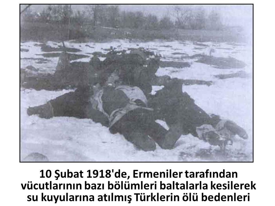10 Şubat 1918 de, Ermeniler tarafından vücutlarının bazı bölümleri baltalarla kesilerek su kuyularına atılmış Türklerin ölü bedenleri