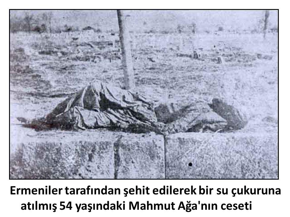 Ermeniler tarafından şehit edilerek bir su çukuruna atılmış 54 yaşındaki Mahmut Ağa nın ceseti