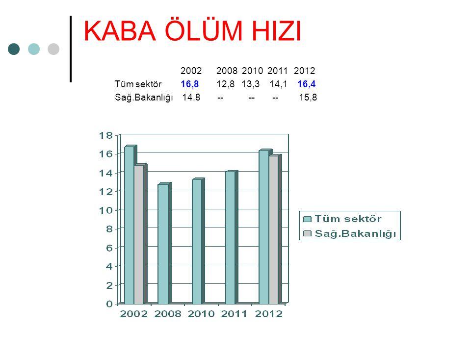KABA ÖLÜM HIZI 2002 2008 2010 2011 2012. Tüm sektör 16,8 12,8 13,3 14,1 16,4.