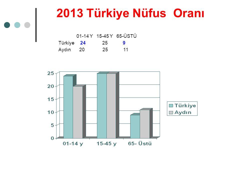 2013 Türkiye Nüfus Oranı 01-14 Y 15-45 Y 65-ÜSTÜ Türkiye 24 25 9