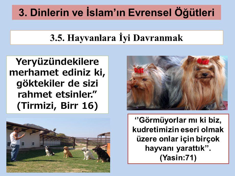 3. Dinlerin ve İslam'ın Evrensel Öğütleri