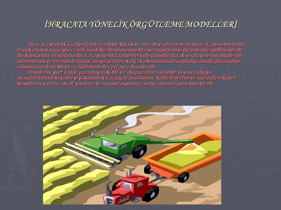 İHRACATA YÖNELİK ÖRGÜTLEME MODELLERİ
