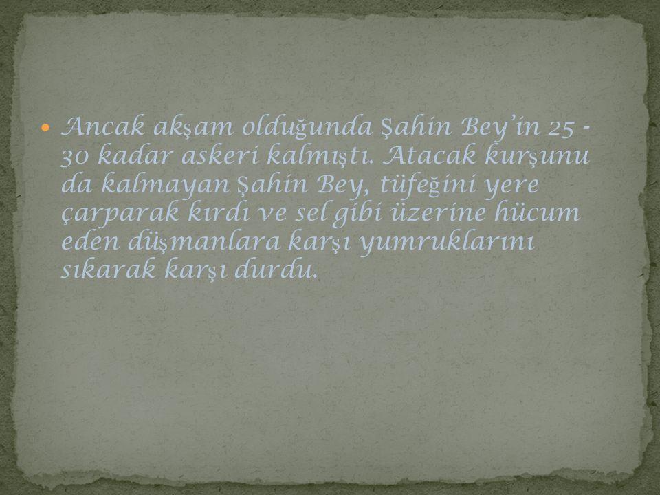 Ancak akşam olduğunda Şahin Bey'in 25 - 30 kadar askeri kalmıştı