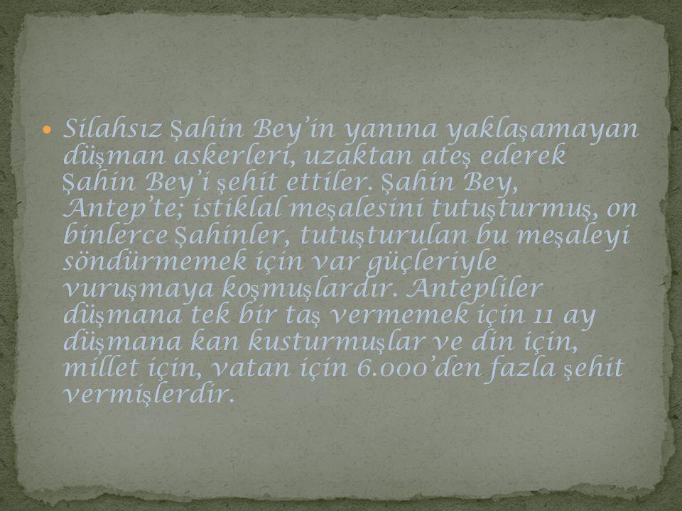 Silahsız Şahin Bey'in yanına yaklaşamayan düşman askerleri, uzaktan ateş ederek Şahin Bey'i şehit ettiler.
