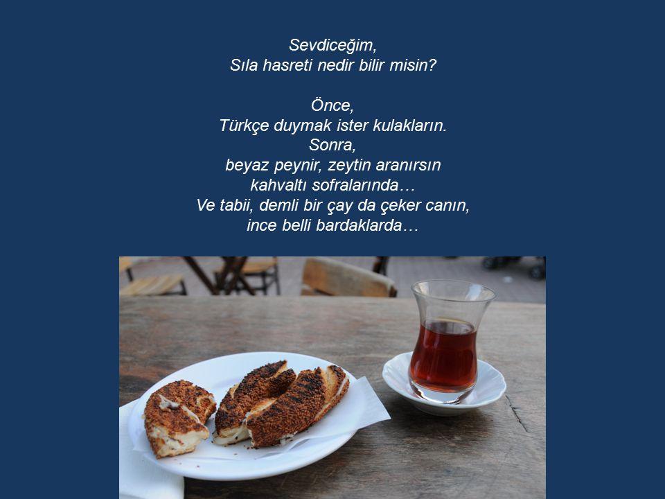 Sıla hasreti nedir bilir misin Önce, Türkçe duymak ister kulakların.