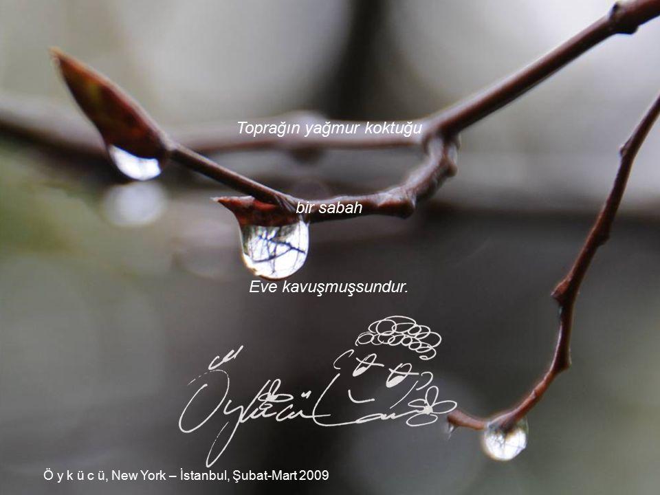 Toprağın yağmur koktuğu