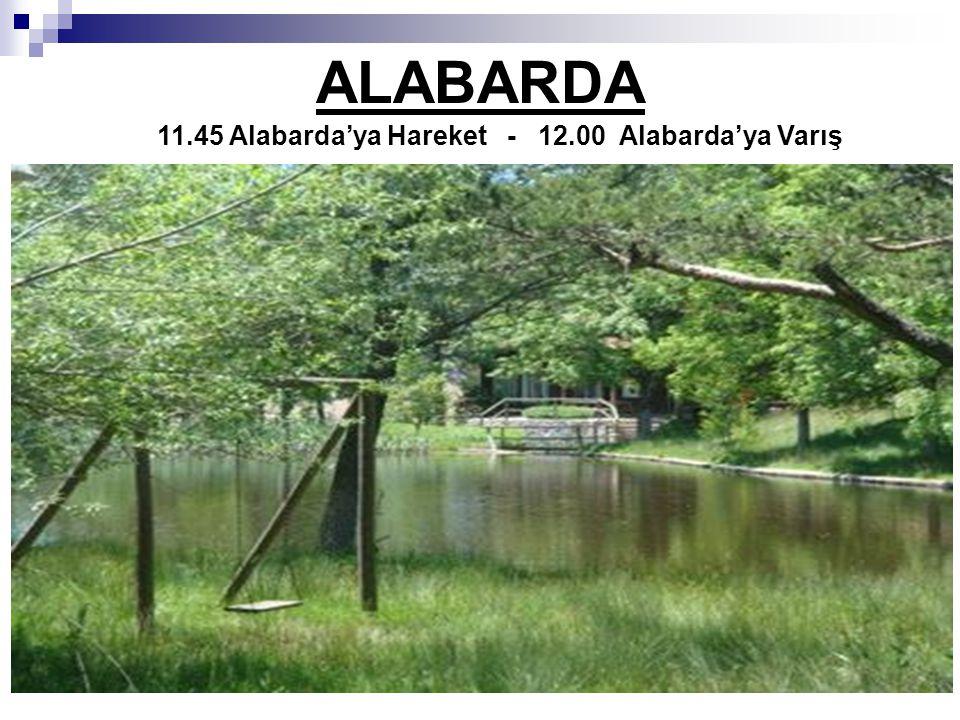 ALABARDA 11.45 Alabarda'ya Hareket - 12.00 Alabarda'ya Varış