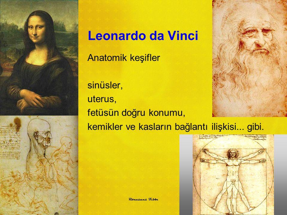 Leonardo da Vinci Anatomik keşifler sinüsler, uterus, fetüsün doğru konumu, kemikler ve kasların bağlantı ilişkisi... gibi.