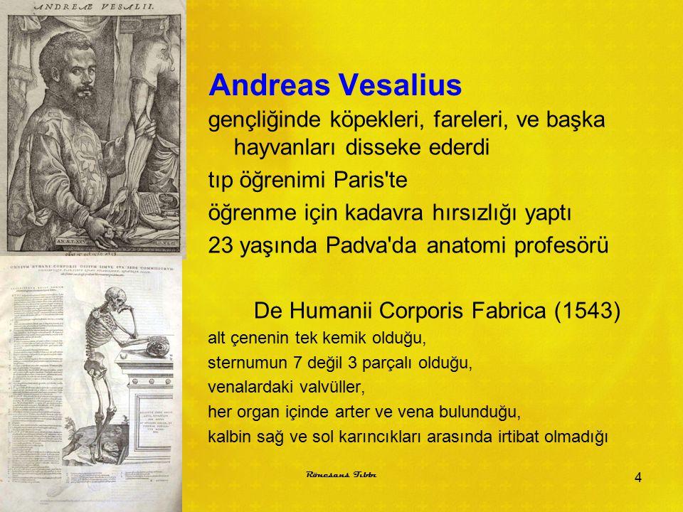 De Humanii Corporis Fabrica (1543)