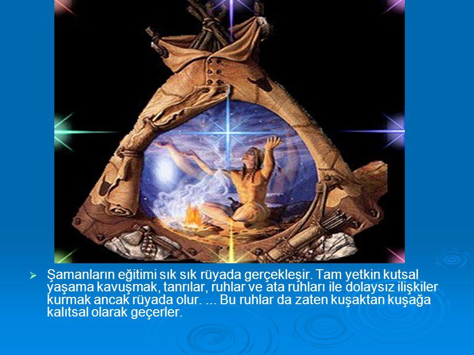 Şamanların eğitimi sık sık rüyada gerçekleşir