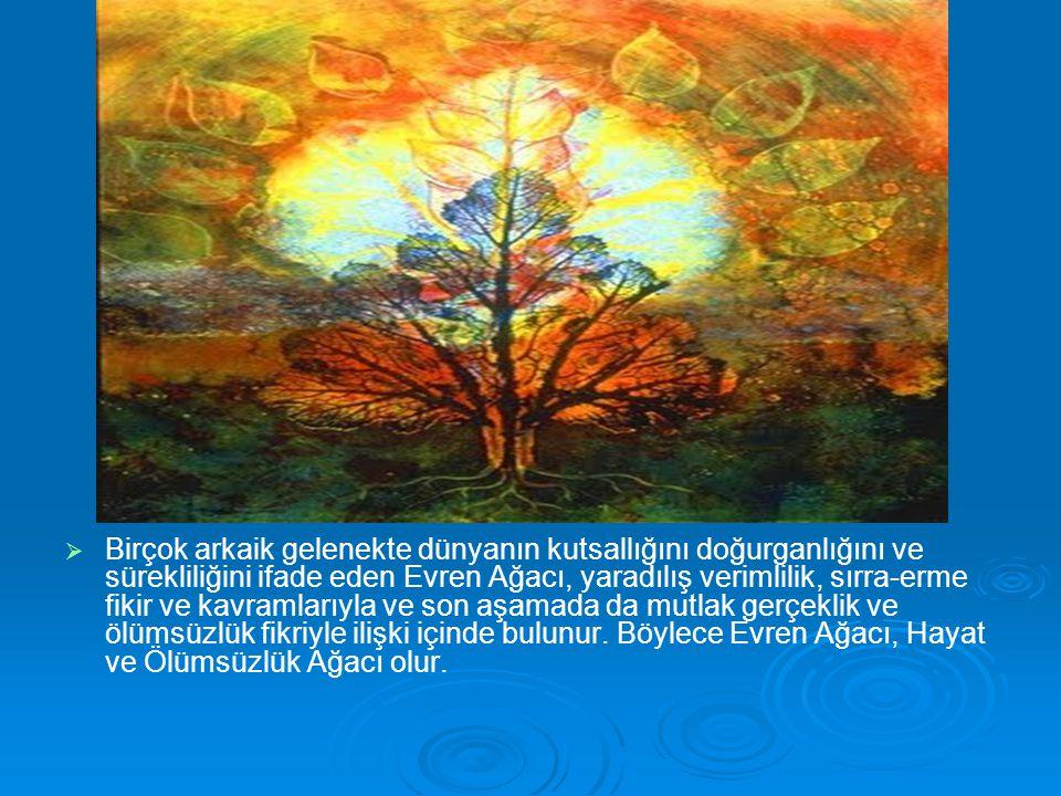 Birçok arkaik gelenekte dünyanın kutsallığını doğurganlığını ve sürekliliğini ifade eden Evren Ağacı, yaradılış verimlilik, sırra-erme fikir ve kavramlarıyla ve son aşamada da mutlak gerçeklik ve ölümsüzlük fikriyle ilişki içinde bulunur.