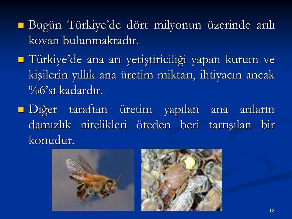 Bugün Türkiye'de dört milyonun üzerinde arılı kovan bulunmaktadır.