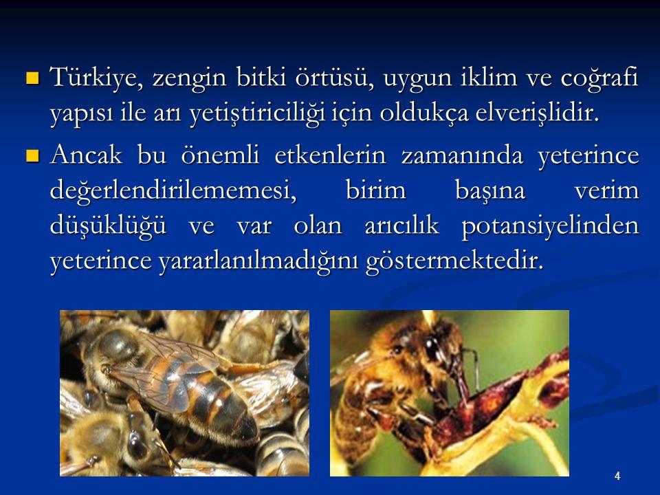 Türkiye, zengin bitki örtüsü, uygun iklim ve coğrafi yapısı ile arı yetiştiriciliği için oldukça elverişlidir.