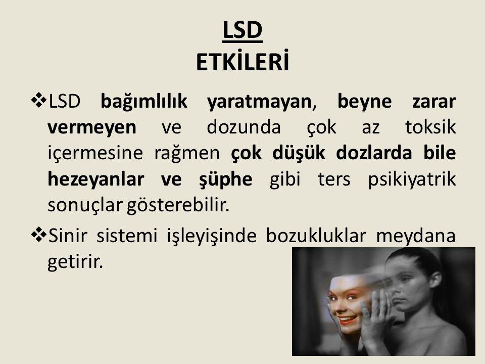 LSD ETKİLERİ