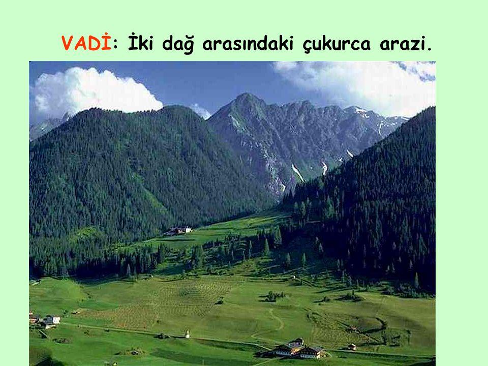 VADİ: İki dağ arasındaki çukurca arazi.