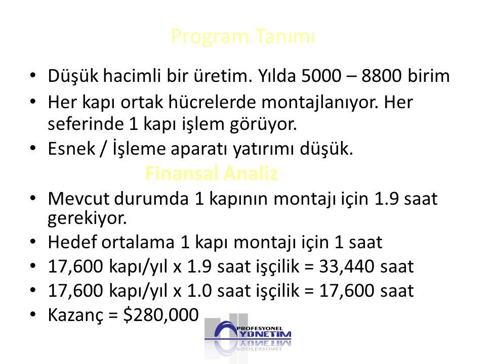 Program Tanımı Finansal Analiz