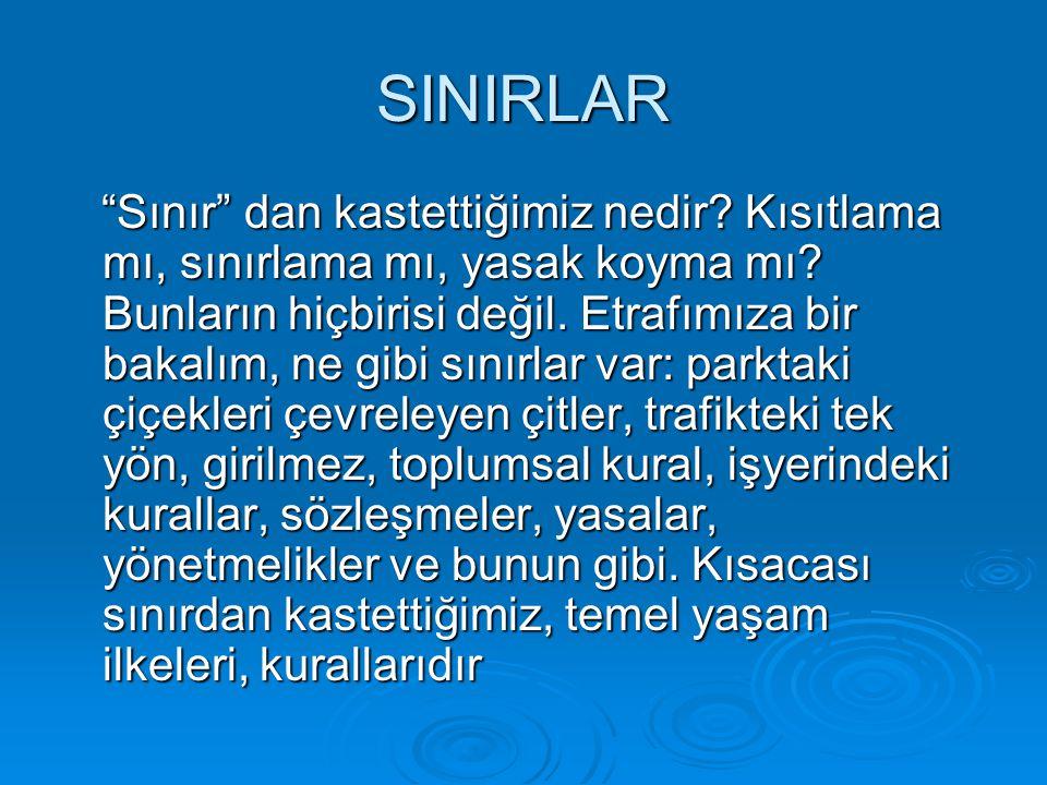 SINIRLAR