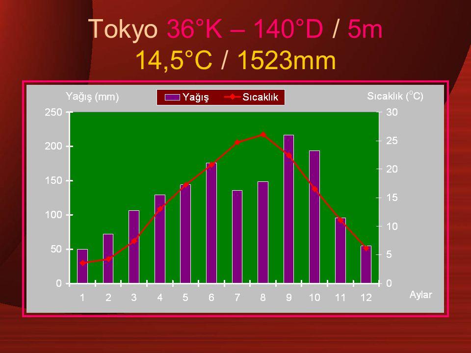 Tokyo 36°K – 140°D / 5m 14,5°C / 1523mm