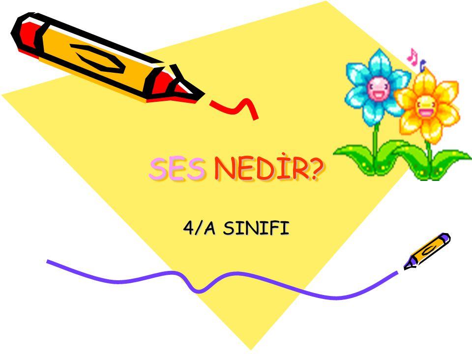 SES NEDİR 4/A SINIFI