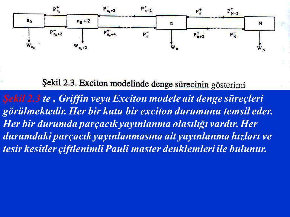 Şekil 2.3 te , Griffin veya Exciton modele ait denge süreçleri görülmektedir.