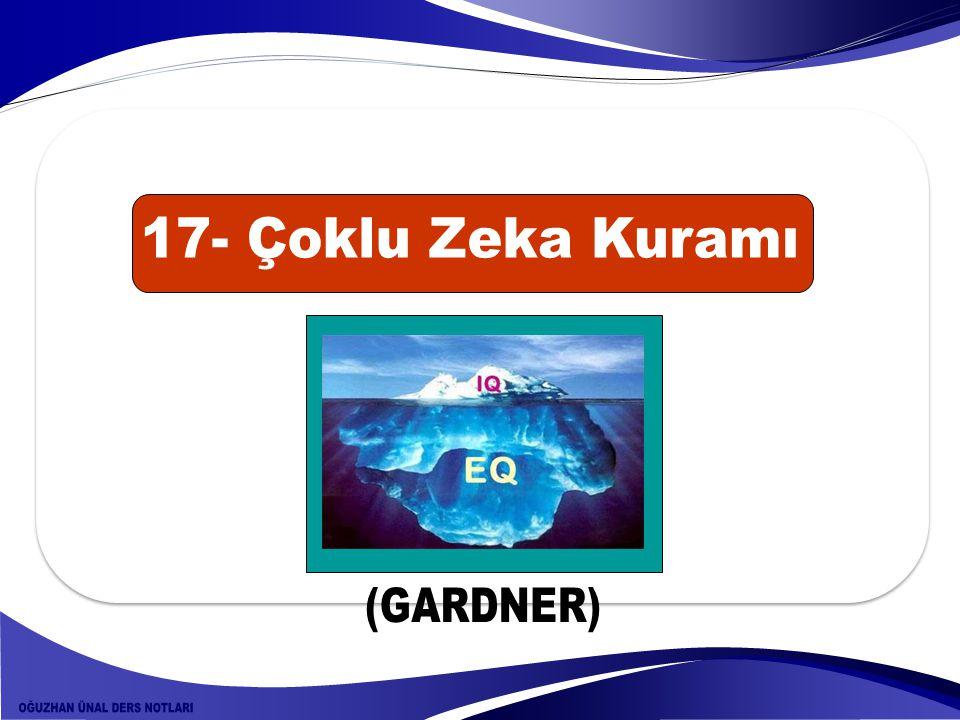 17- Çoklu Zeka Kuramı (GARDNER)