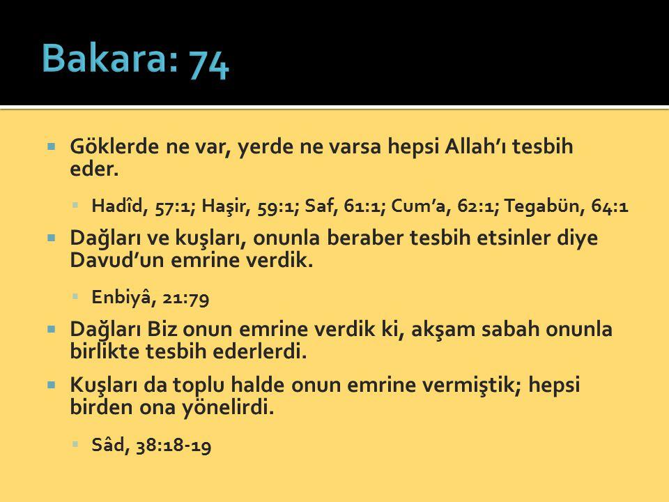 Bakara: 74 Göklerde ne var, yerde ne varsa hepsi Allah'ı tesbih eder.