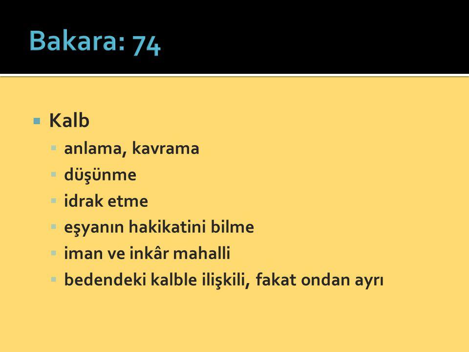 Bakara: 74 Kalb anlama, kavrama düşünme idrak etme