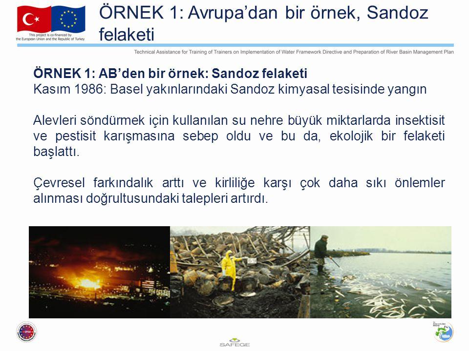 ÖRNEK 1: Avrupa'dan bir örnek, Sandoz felaketi