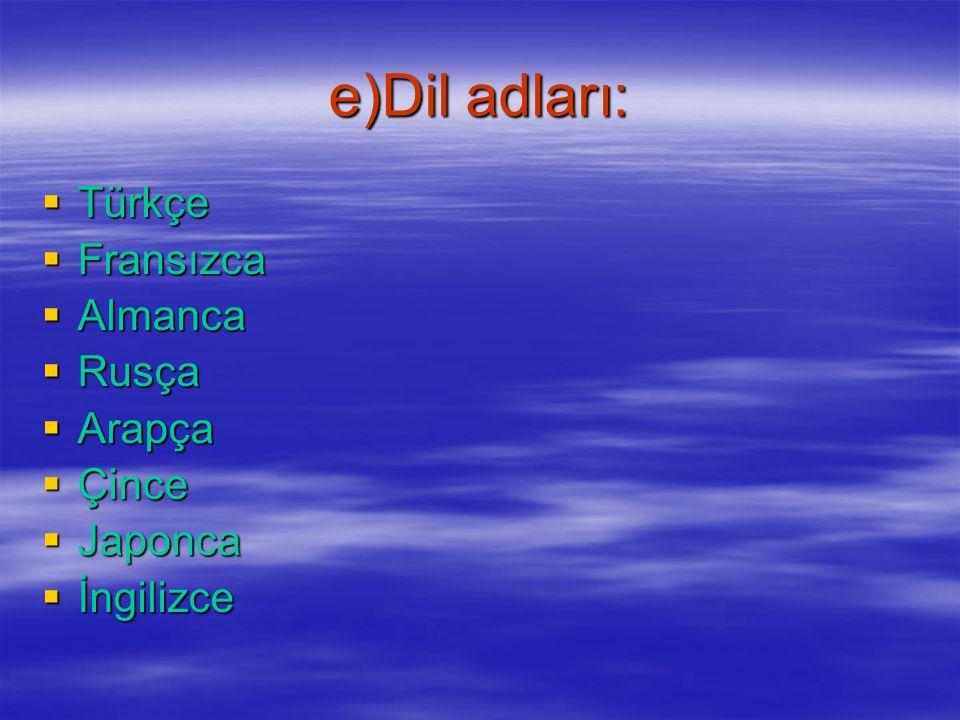 e)Dil adları: Türkçe Fransızca Almanca Rusça Arapça Çince Japonca
